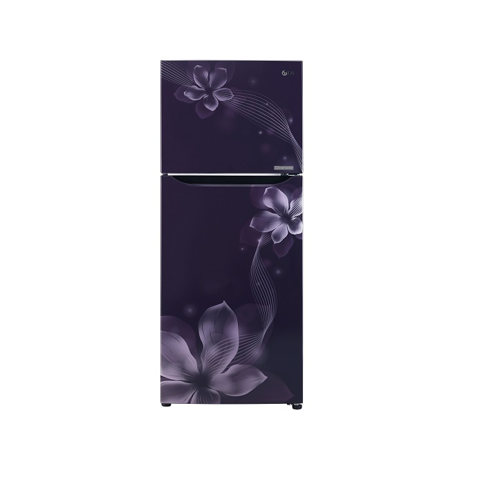 Buy Lg Refrigerator Dd 260L GL-Q292SPOR Purple Orchid Gl Vase Purple Html on